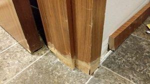 Wasserschaden an Tür beseitigen